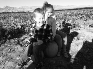 Pumpkin Patch pic 2